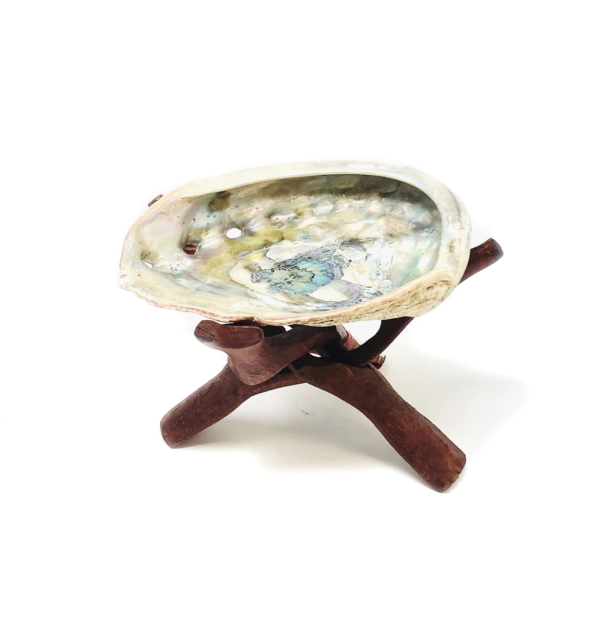 Abalone Shell with Tripod $19.99