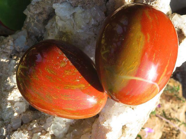 Red Ocean Jasper Eggs 2